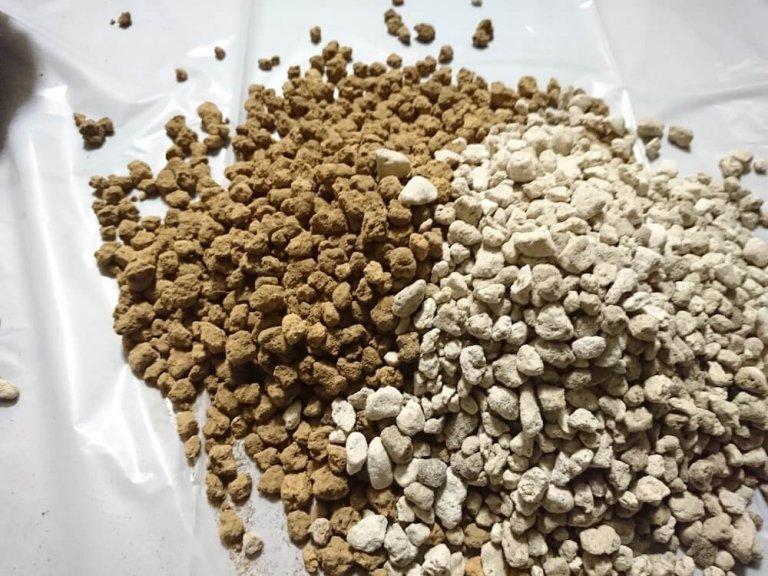 billbergia-soil-04