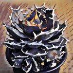 画像加工アプリ「Prisma」で植物をアート風にして遊ぶ