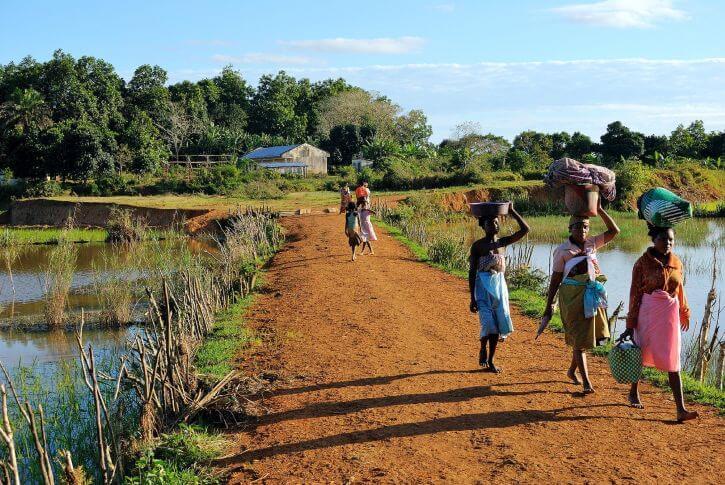 パキポディウムの原産地、マダガスカルの様子