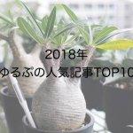 2018年「ゆるぷ」の人気記事TOP10