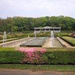 [イベント]神代植物公園「グリーンマルシェ」19年5月4日