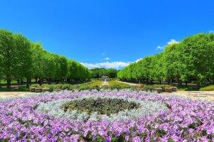 昭和記念公園 photo by くろふね