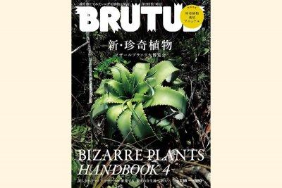 brutus-2019-07-15