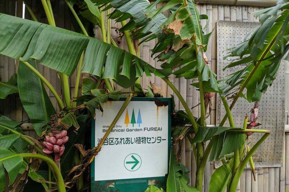 渋谷区ふれあい植物センターの入り口看板