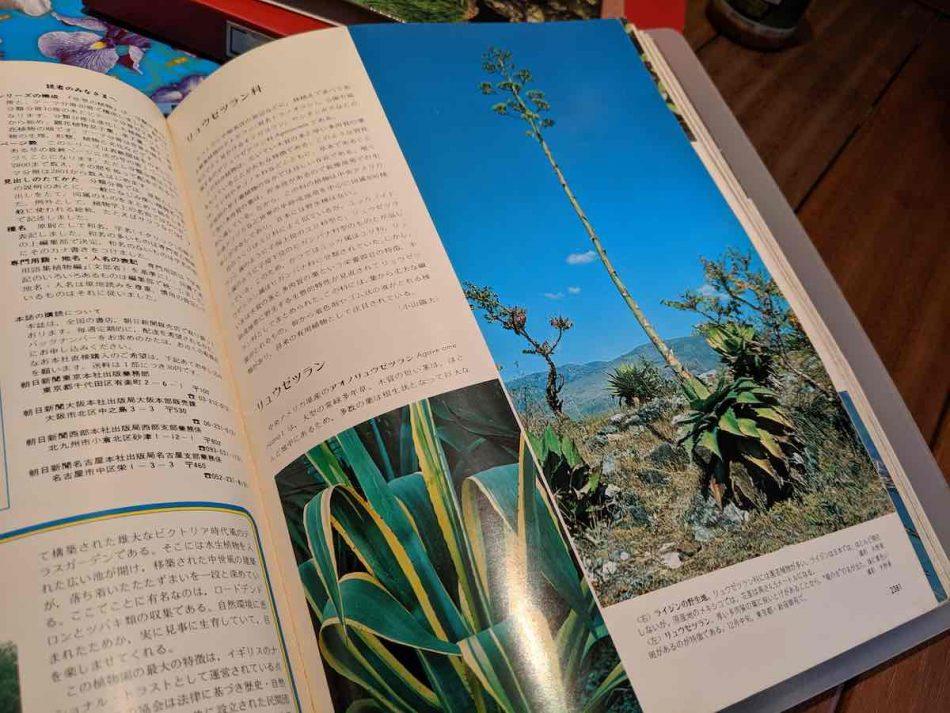 渋谷区ふれあい植物センターの図書室・学習コーナー2