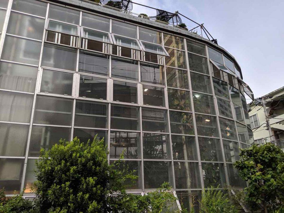 渋谷区ふれあい植物センター(植物園)の温室アップ