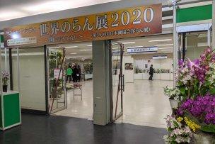 サンシャインらん展(2020)