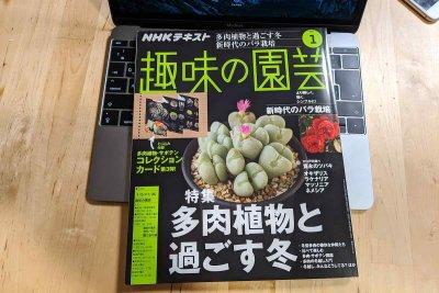趣味の園芸2020年1月号「多肉植物と過ごす冬」特集