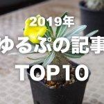 2019年「ゆるぷ」の人気記事TOP10