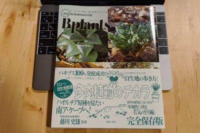 ビザールプランツ 冬型 珍奇植物最新情報