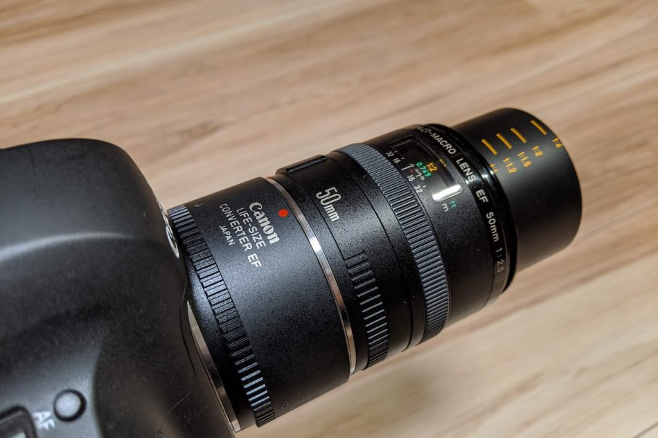 EF50mm F2.5 Compact Macro + Life Size Converter EF