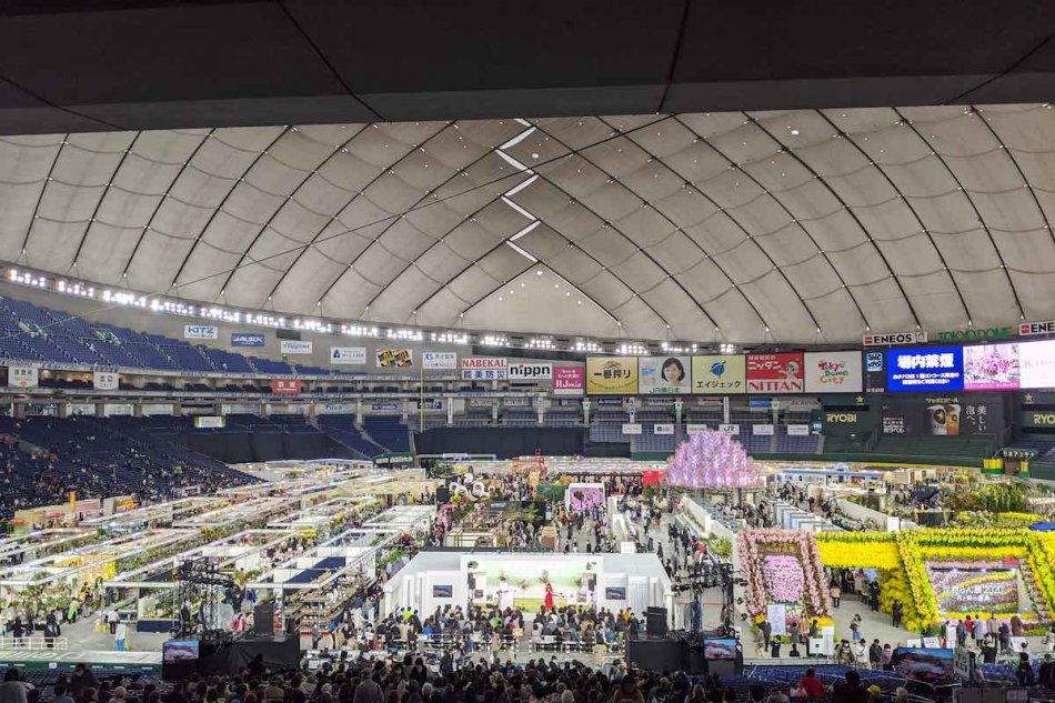 世界のらん展2020の様子。東京ドーム