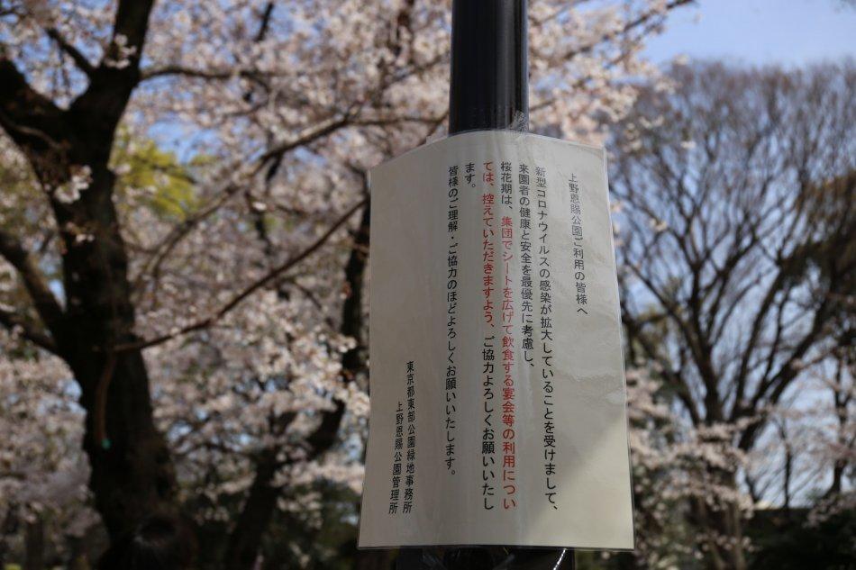 上野恩賜公園はお花見宴会を控えるように