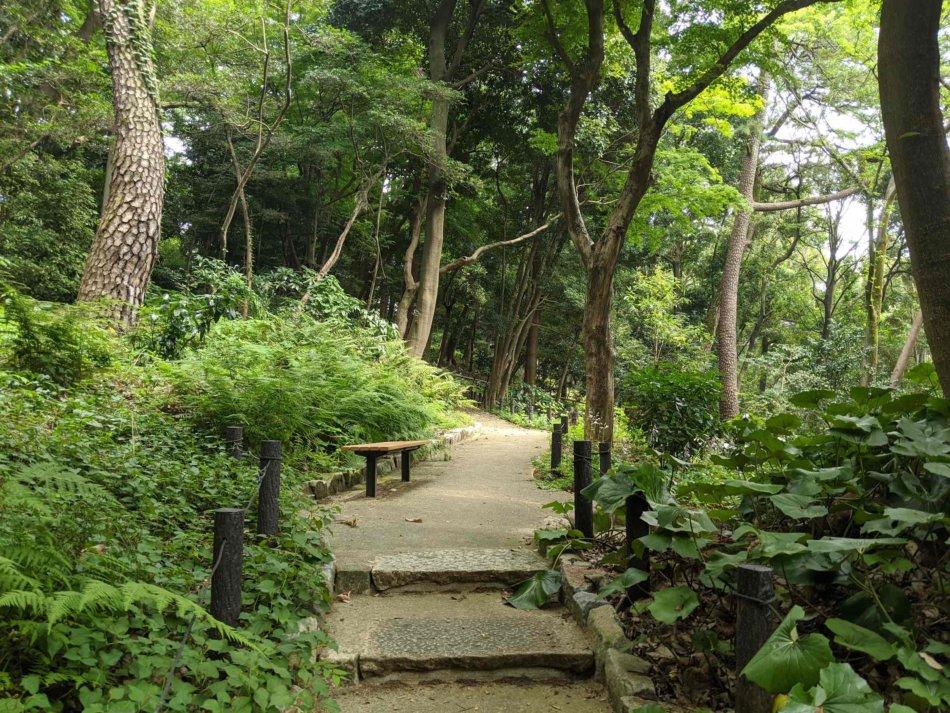 肥後細川庭園の山の方