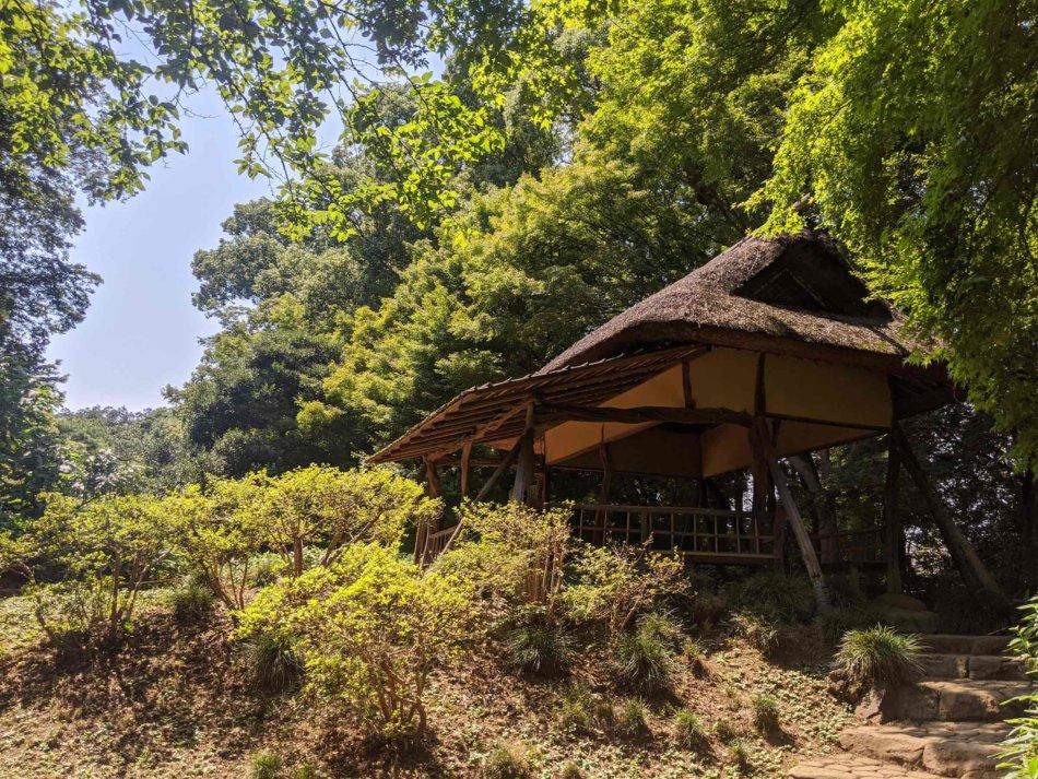 六義園:つつじ茶屋を下から撮影
