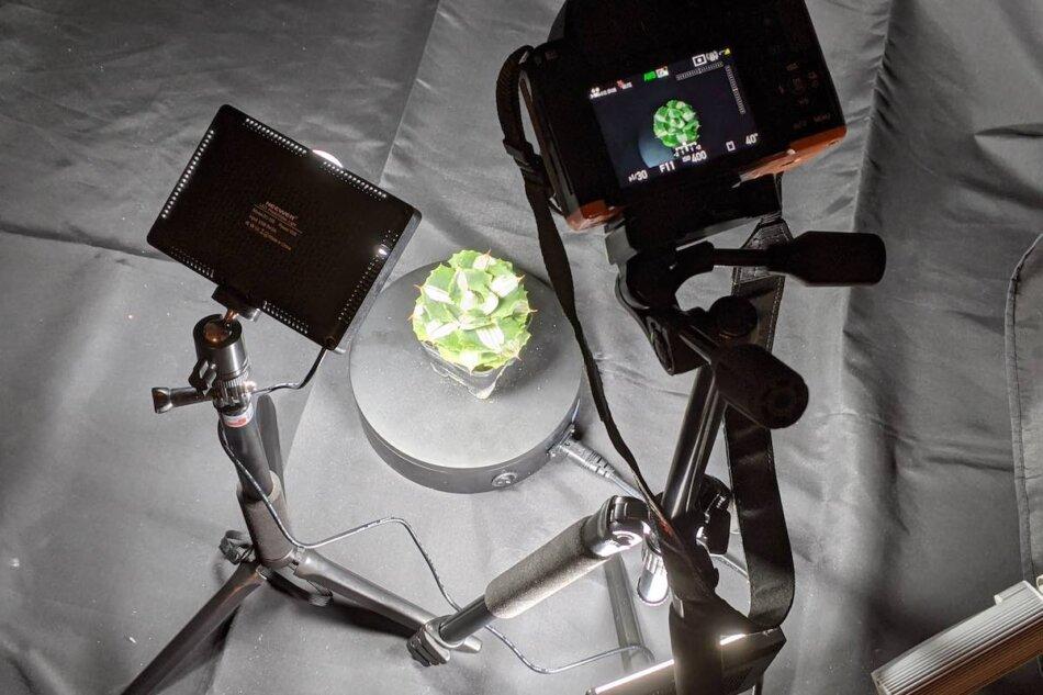 植物の3Dモデルを作るためのフォトグラメトリー用の素材撮影。