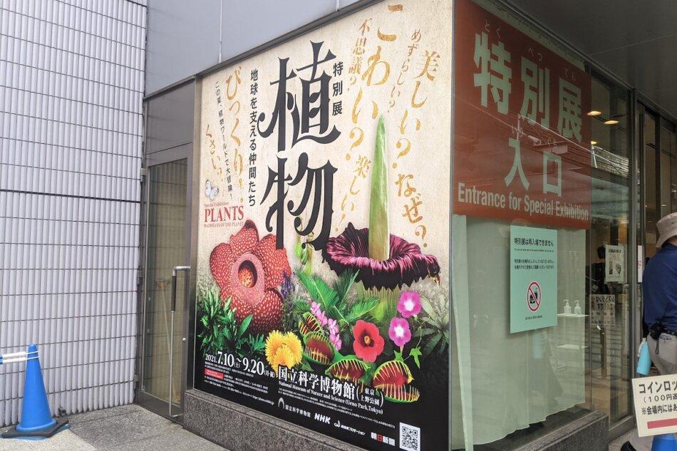 特別展「植物 地球を支える仲間たち」特別展入り口