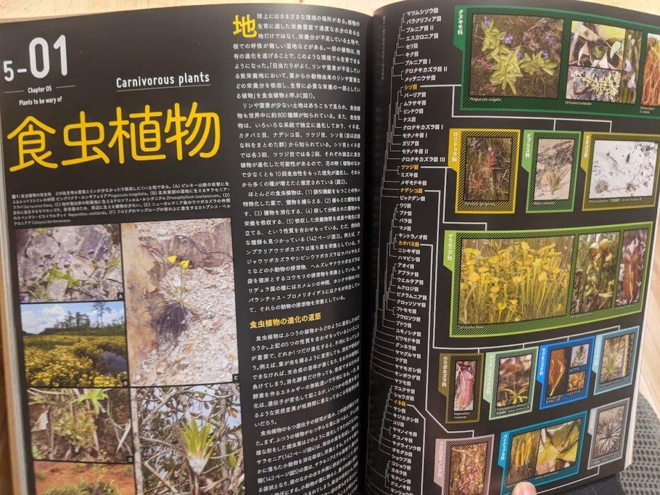 特別展「植物 地球を支える仲間たち」公式ガイドブック